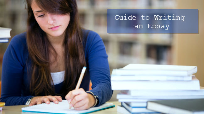 Write My Essay. Guide to Writing an Essay
